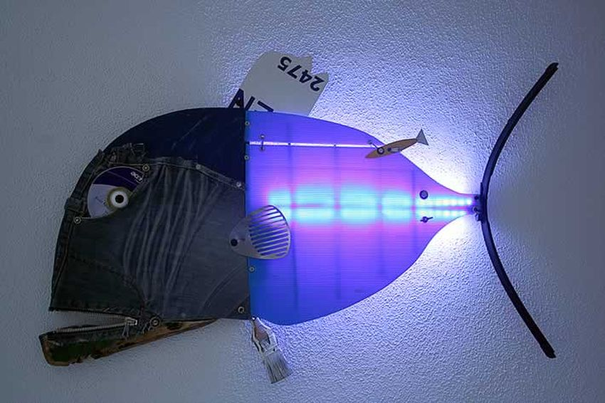 ScoobaFish by Maurizio Sergiusti