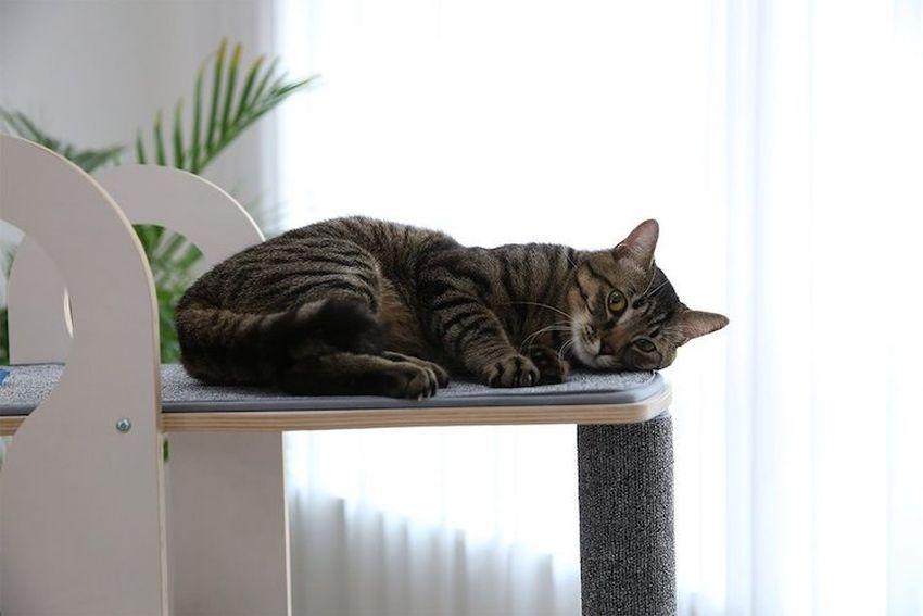 Tuft + Paw Milo Cat Tower