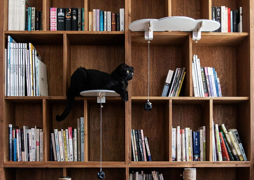 catssup hacks into existing furniture to create virtual Library Table Modern Bookshelves