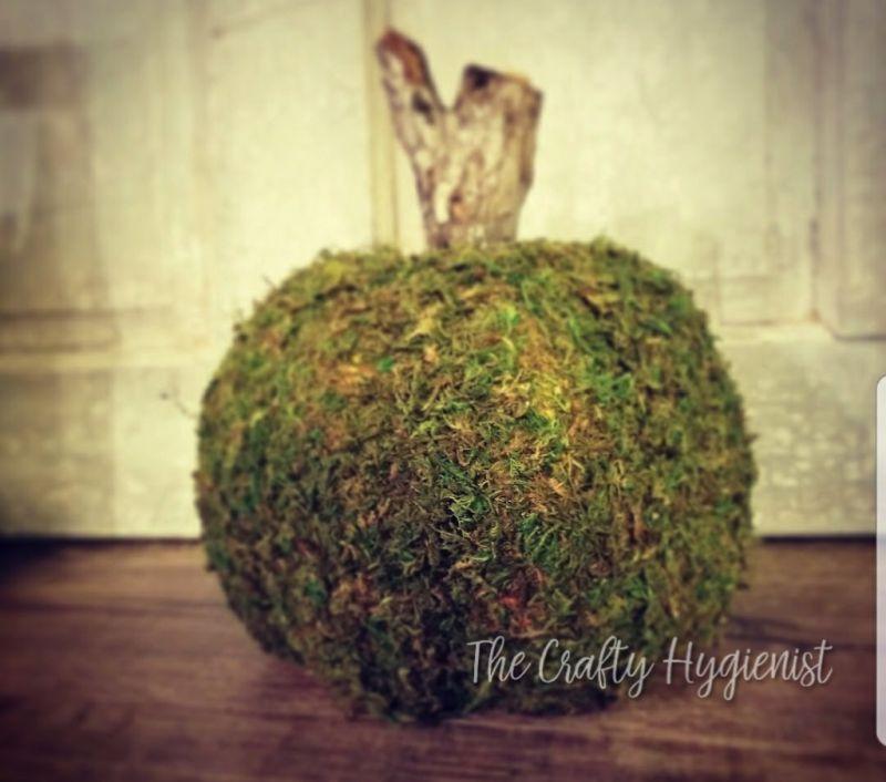 DIY moss pumpkin