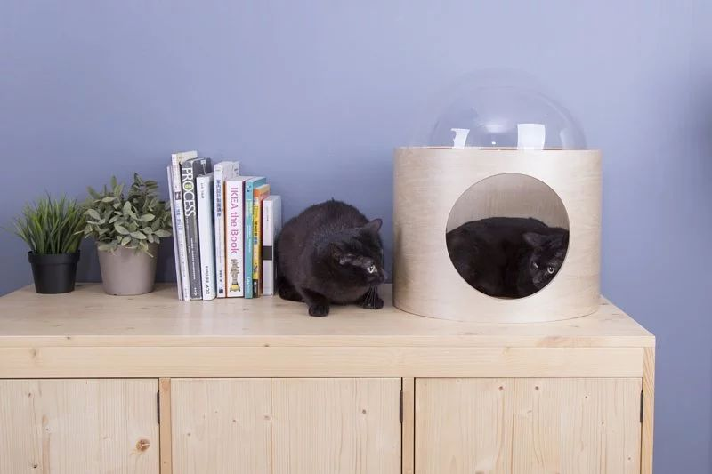 Myzoo Studio's Spaceship-Inspired Cat Beds