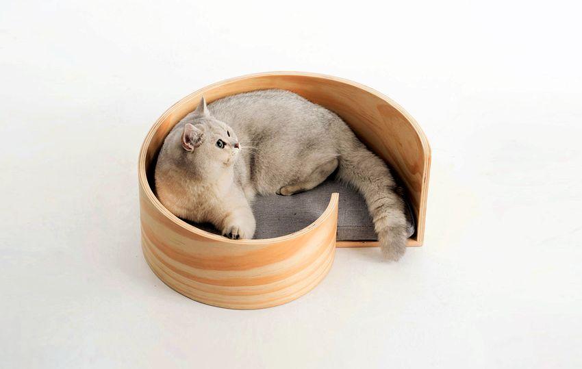 Pidan Sea Snail Cat Bed - Pet Furniture