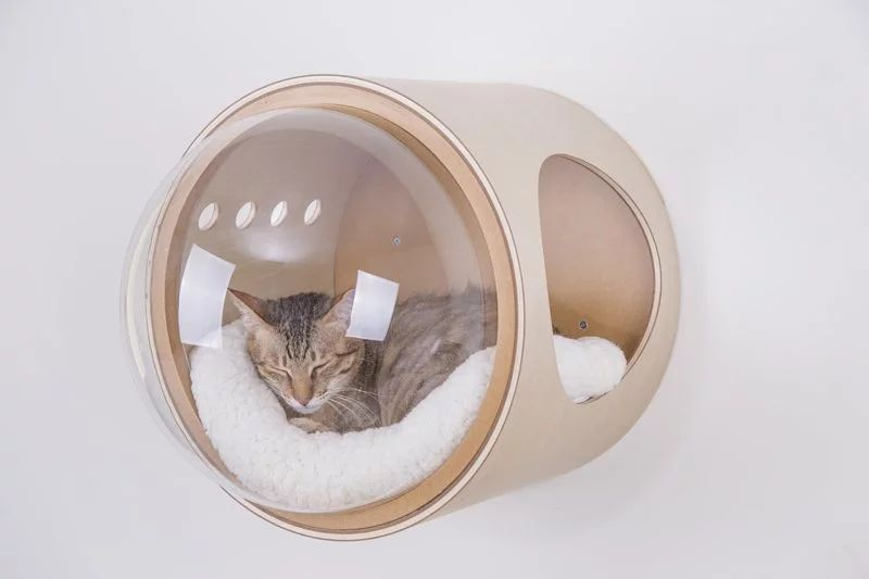 Myzoo Studio's Spaceship-Inspired Cat Beds