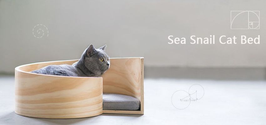 pidan-sea-snail-cat-bed