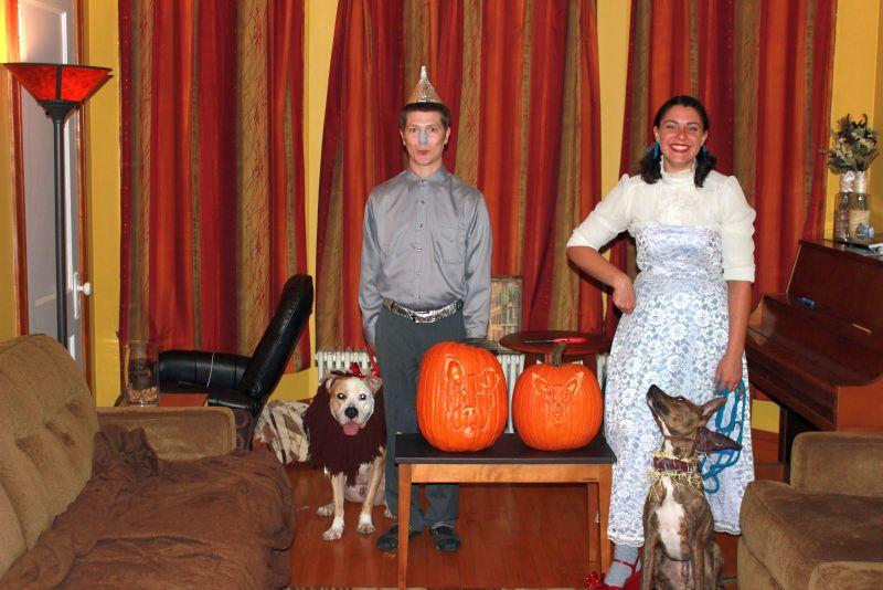 Alfred dog-o-pumpkin