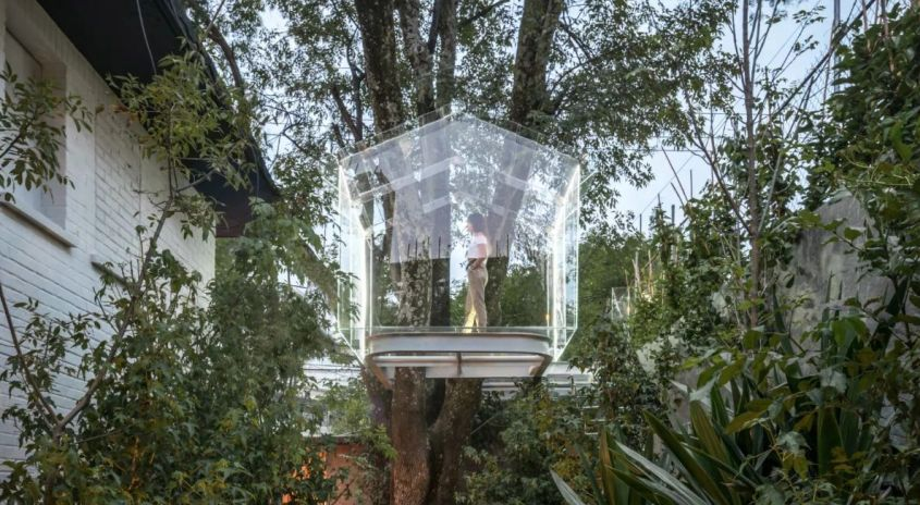 Transparent Treehouse by Gerardo Broissin