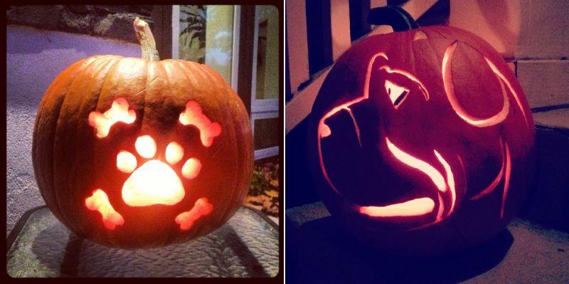 dog o lantern - pumpkin carving ideas