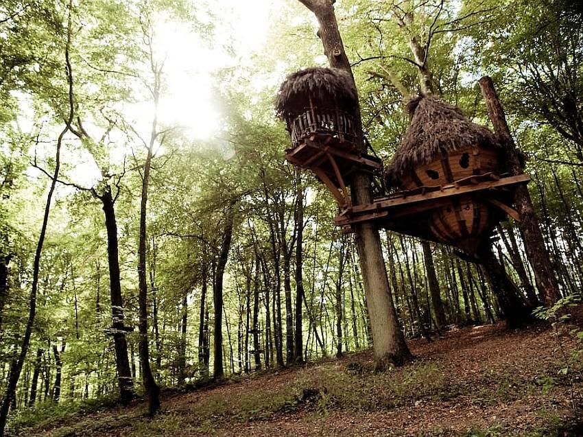 drommen treehouse France-1