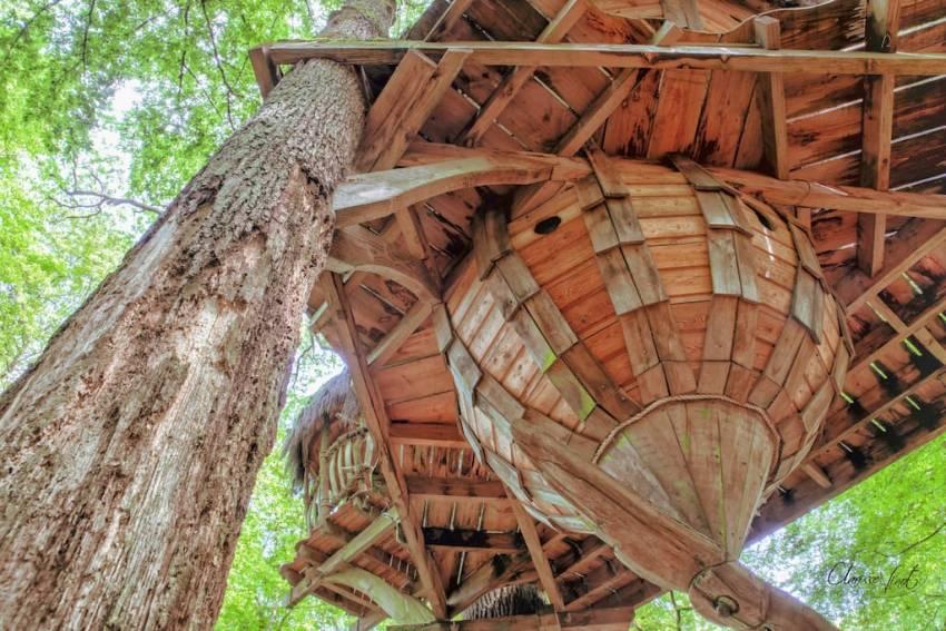 drommen treehouse France-2