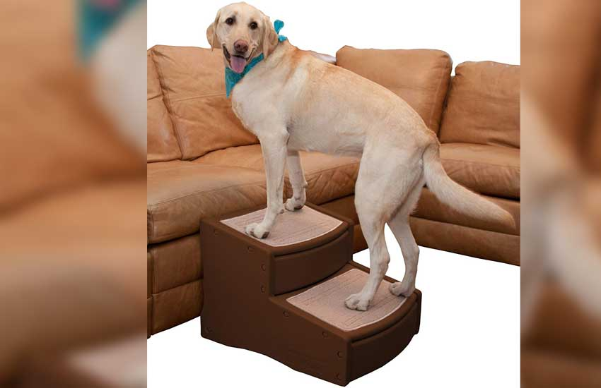 Pet Gear Dog Stairs