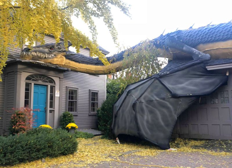 There S A Gigantic Dragon Crawling On This Home Roof