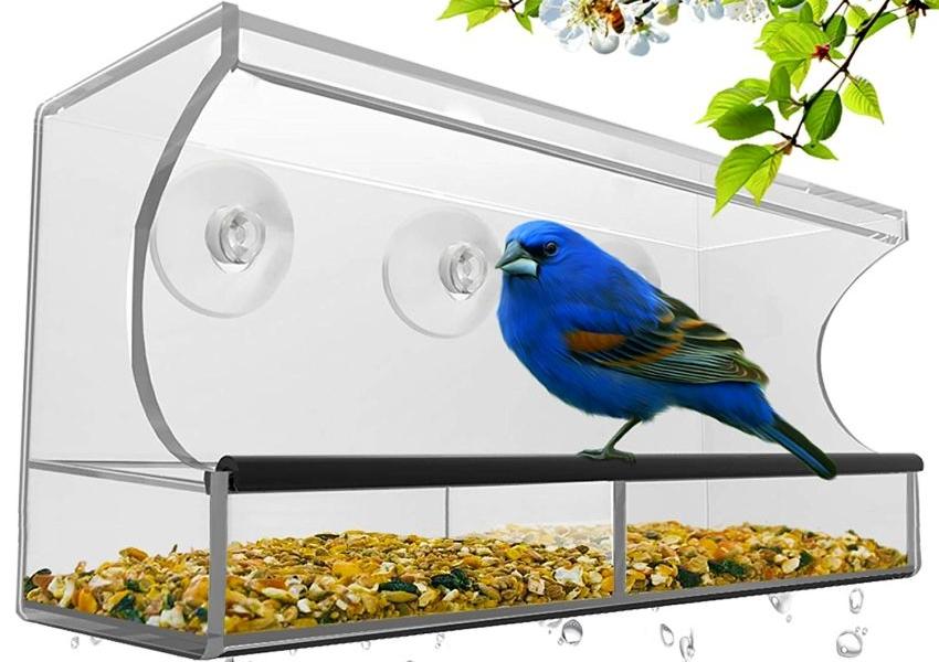 Nature Hangout Outdoor Window Bird Feeder