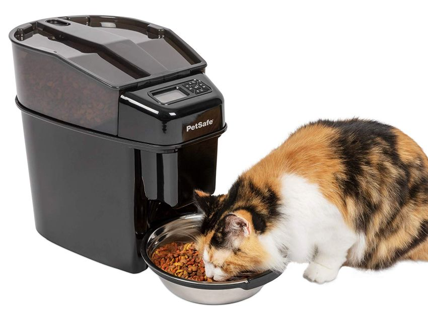 PetSafe Automatic Cat Feeder - Gift Ideas for pets
