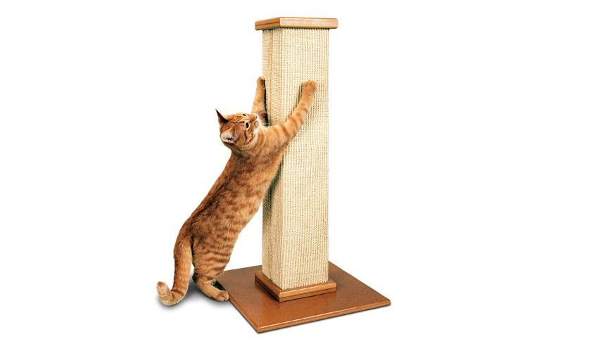 Pioneer Pet SmartCat Scratching Post-Cat furniture