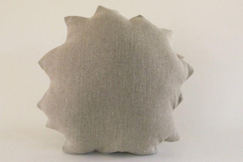 Plantillo succulent pillow