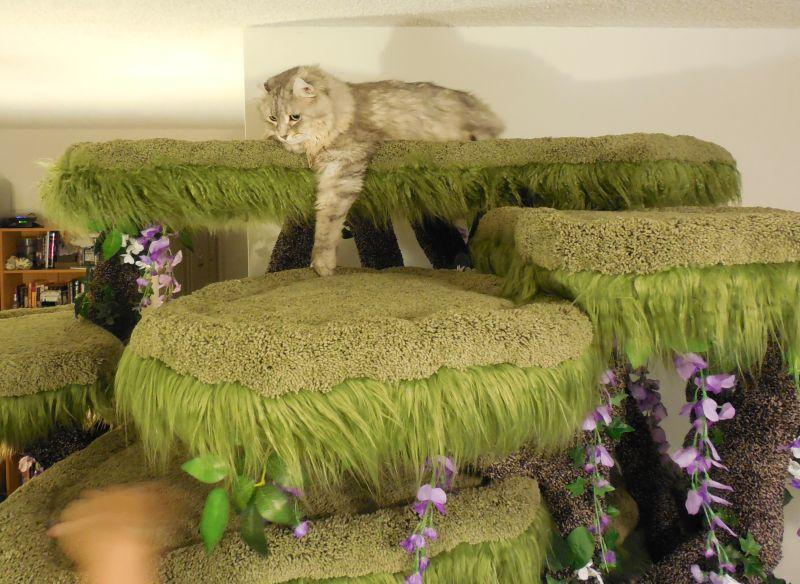 Realistic Cat Trees by Hollywood Kitty Company