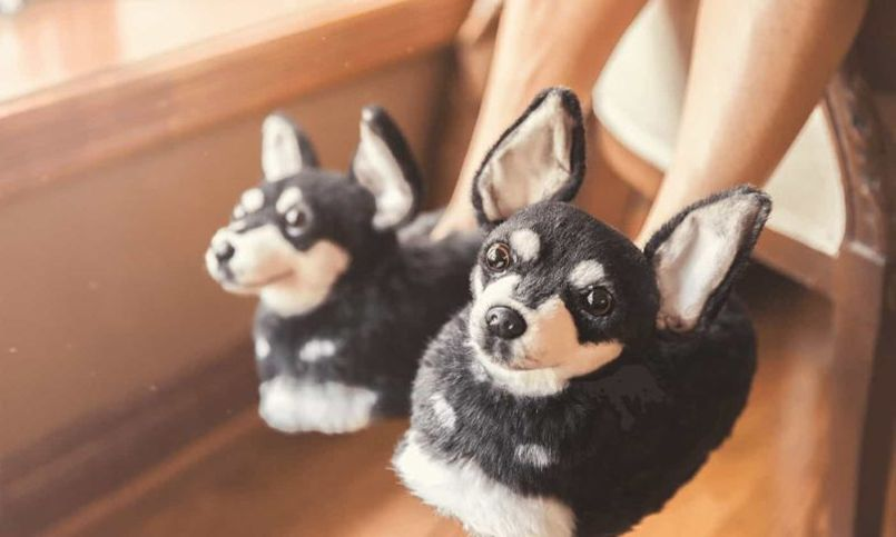 Cuddle Clones Makes Custom Stuffed Animals Looking-Like Your Pet