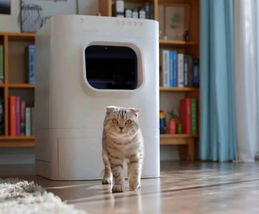 LavvieBot Cat Litter Box