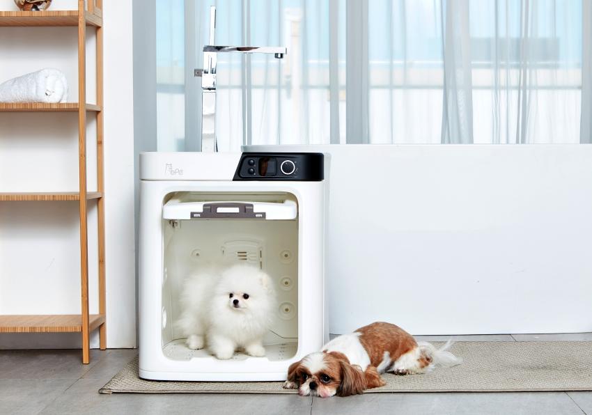 Pepe Pet Dryer - CES 2019