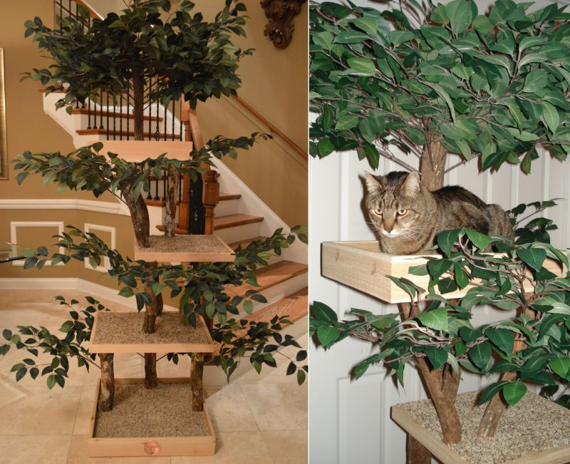Ready-to-Assemble Real Wood DIY Cat Tree Kits