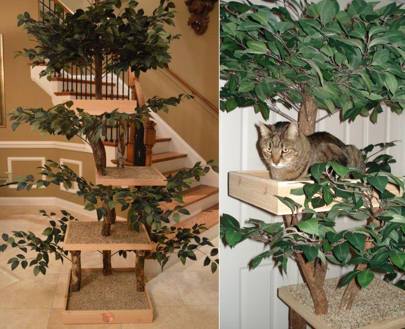 Ready To Assemble Real Wood Cat Tree Kits