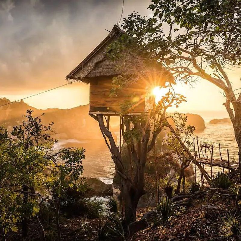 You'll Love to be Clicked at Rumah Pohon Treehouse Rental in Bali