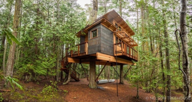 treehouse in San Juan Islands
