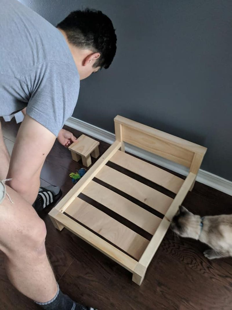 Florida Man Builds Custom Cat Bed and Side Table