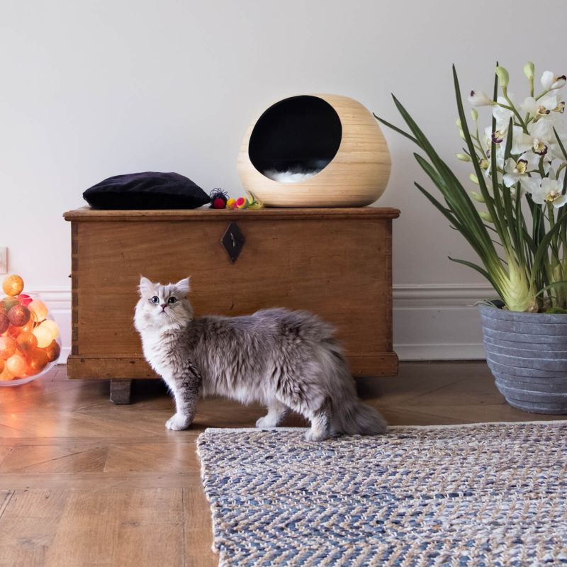 Bamboo cat bed