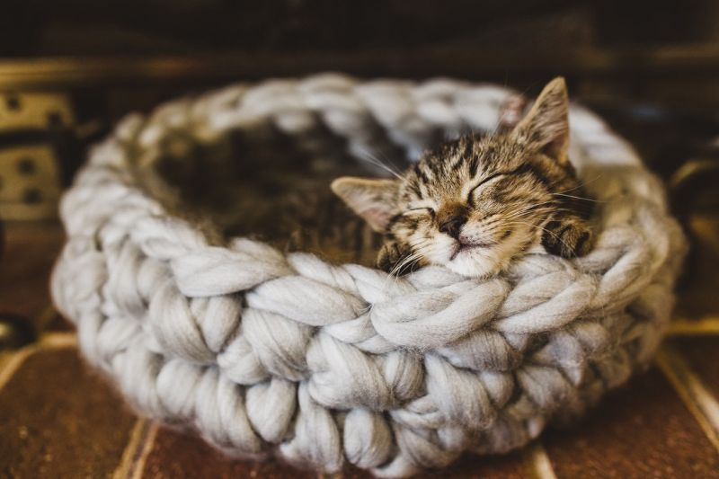 Crocheted wool cat bed