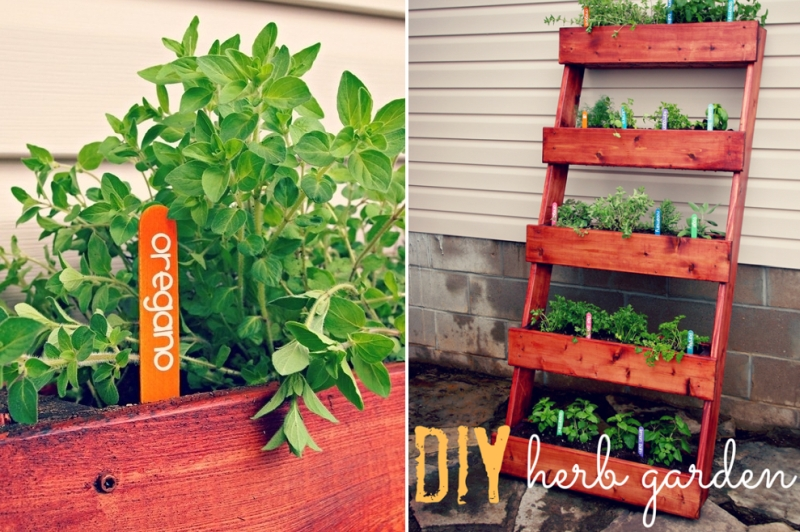 DIY herb garden - indoor vertical garden