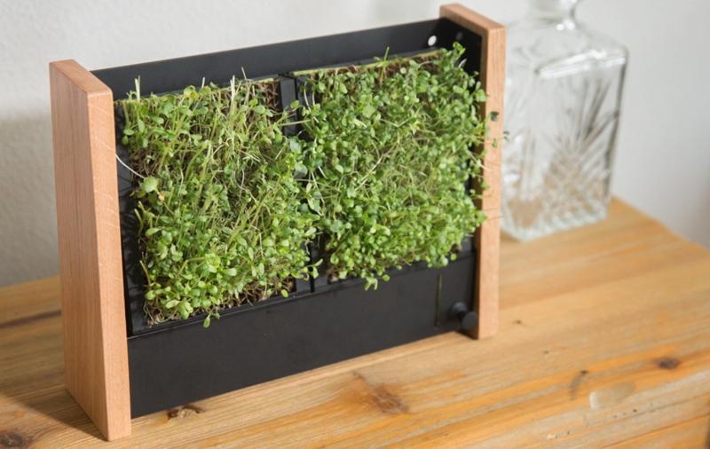 EcoQube Frame Compact Vertical Garden Planter