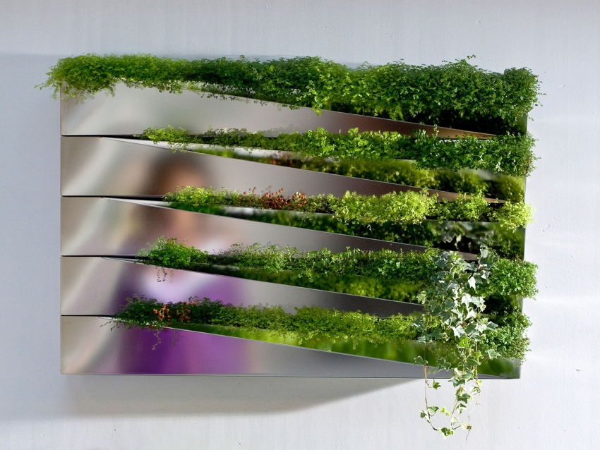 Herbe Mirror vertical indoor planter by Jean Jacques Hubert