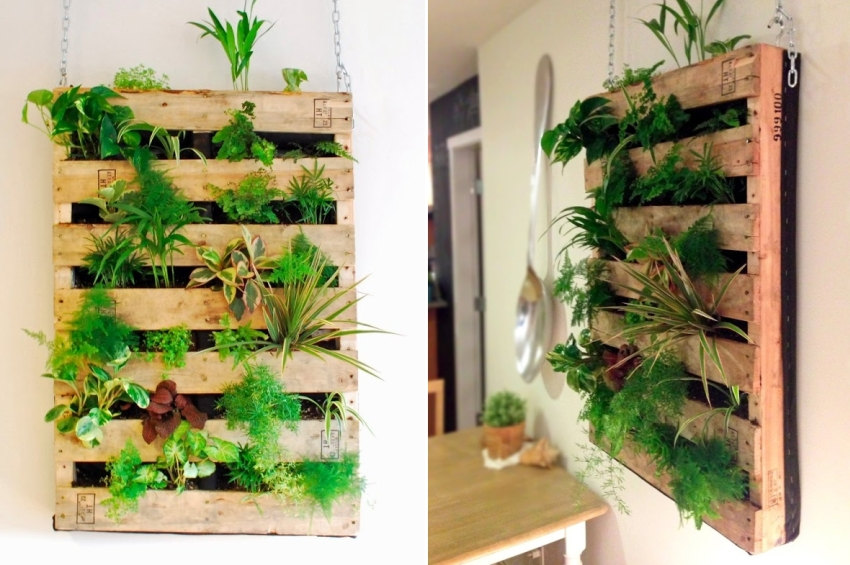 Pallet Living Wall - Indoor Vertical Garden