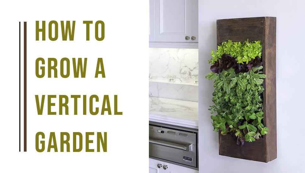 how to grow indoor vertical garden