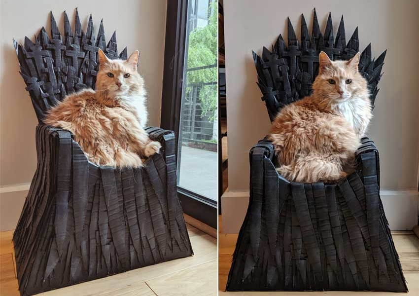 Redditor Builds Cardboard Iron Throne for Her Cat