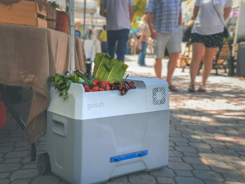 Gosun Chill Solar Powered Cooler Doesn T Require Ice To