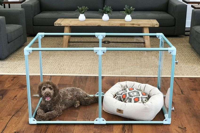 Lucidium Dog Pens by Clearly Loved Pets