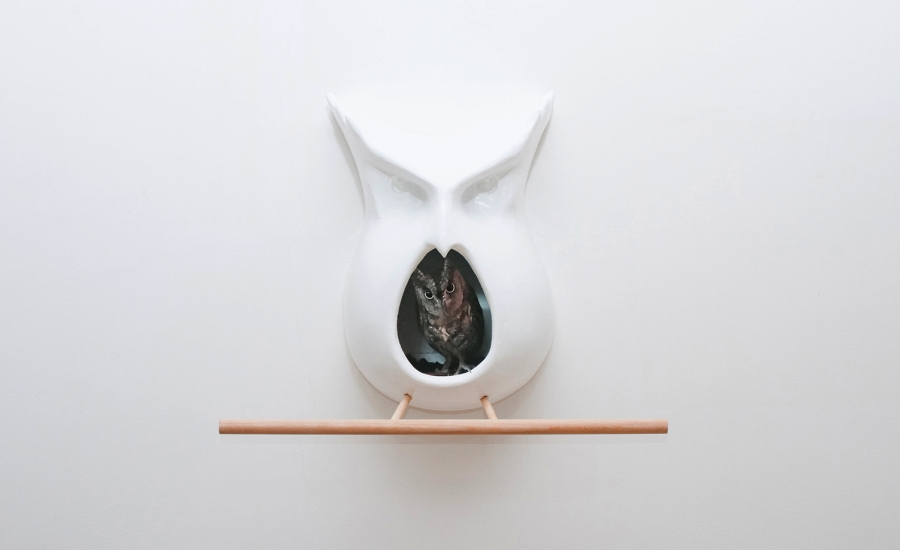 Owl-Shaped Buhaus Birdhouse by Bodgan Moga