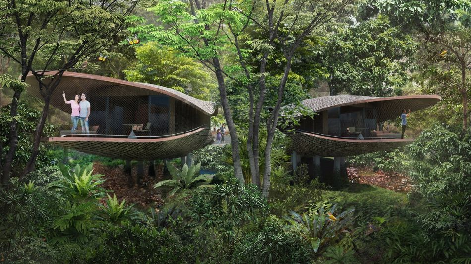 Seed Pod-Shaped Treehouses at New Mandai Resort