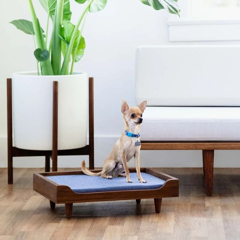 Solid Wood Pet Daybed by Case Study Furniture