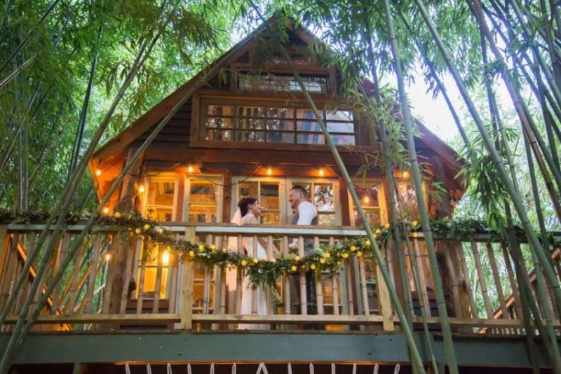 Rent This Amazingly Cool Alpaca Treehouse in Atlanta at Airbnb for $375