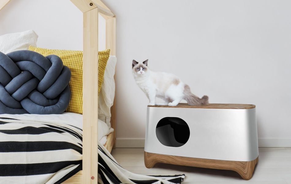 Best Self Cleaning Litter Box 2020.Ikuddle Auto Pack And Self Cleaning Litter Box Is A Must For