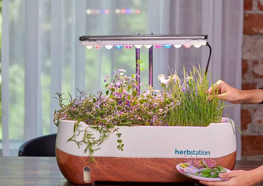 Altifarm Launches Herbstation Self-Watering Indoor Garden at Kickstarter