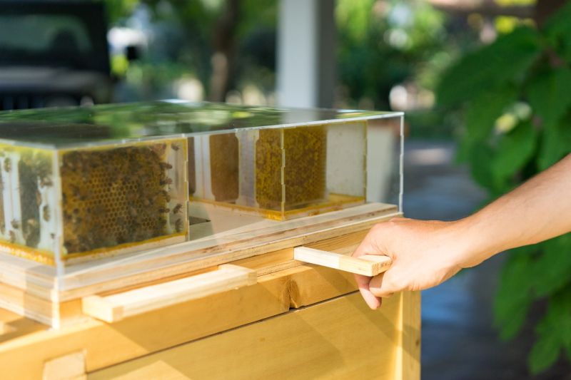 B-box Beehive by Beeing is Designed for Home Beekeeping