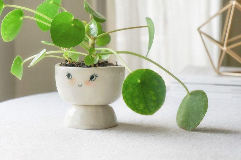 Handcrafted Ceramic Planter by Abby Ozaltug