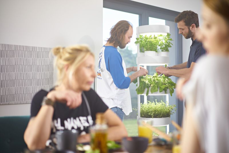 Verdeat's Automated Hydroponic Indoor Garden Grows Veggies Faster