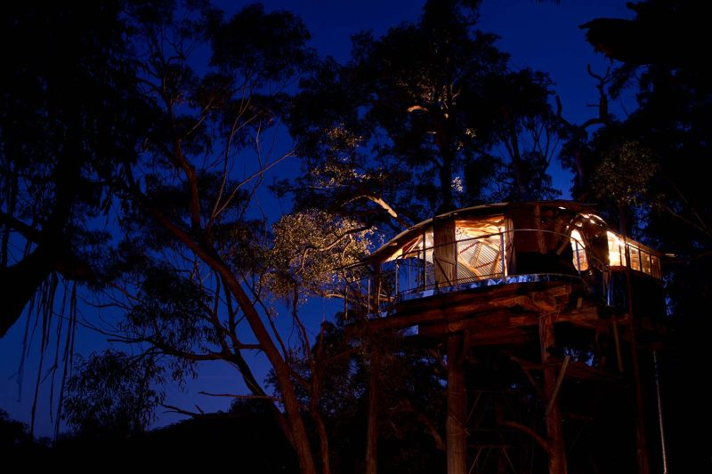 You can Rent This Amazing Treehouse in Blue Mountains, Australia