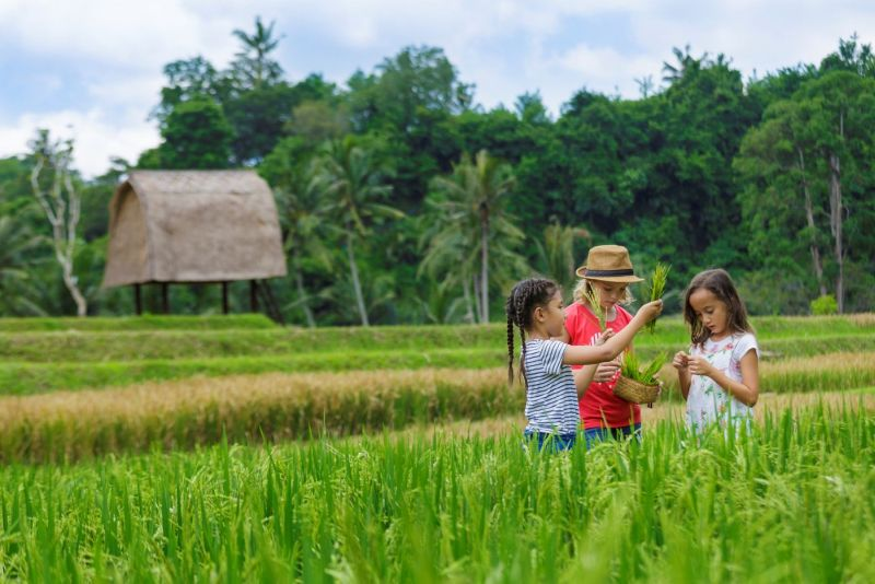 Mandapa Camp in Bali, Indonesia is Specially Designed for Children