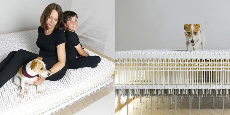 Ammique to launch first mattress-free bed of the world